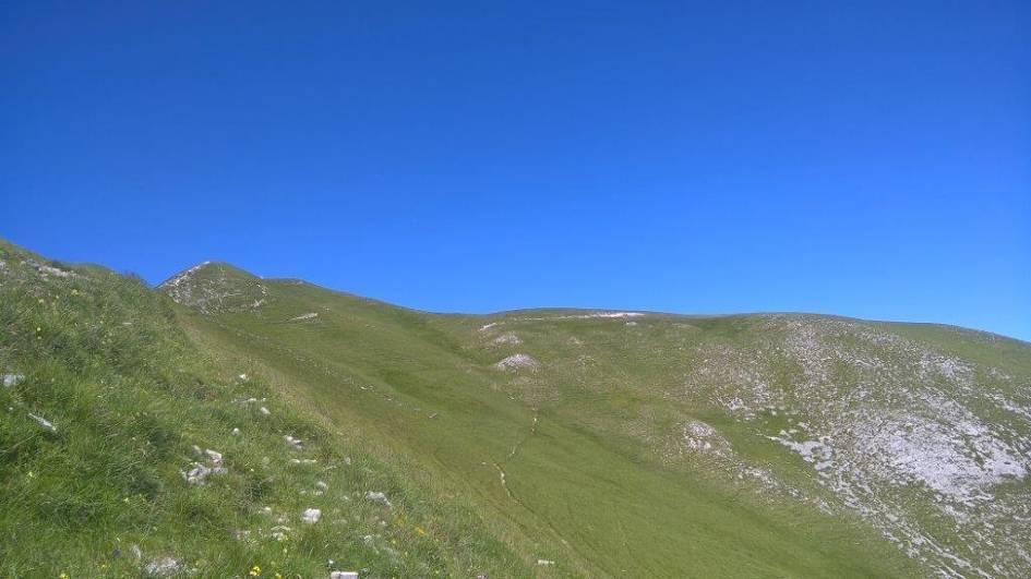 """Versante est del M. Acuto: la sottile linea bianca sotto il crinale è la """"pietraia"""", alla destra della cima"""